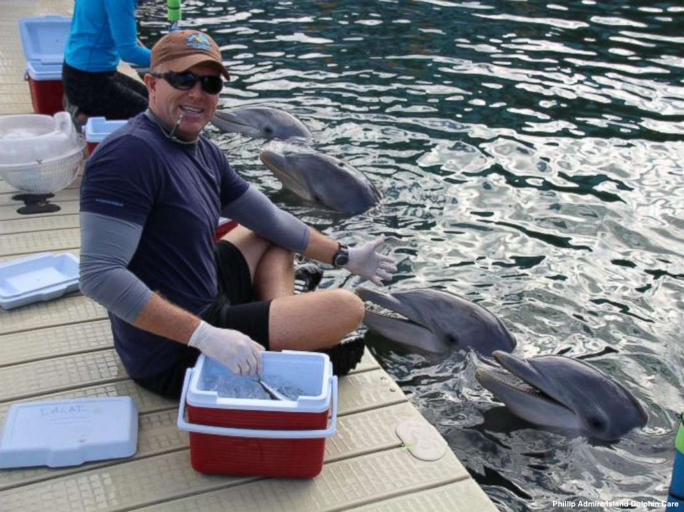Photo: Dolphin Care